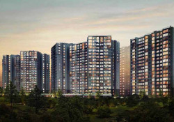 Opaline Sequel By Olympia Group