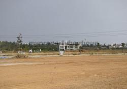 Bluejay Aster Plot By BLUEJAY Enterprises Bangalore