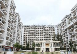 Kolte Patil IVY Estate By Kolte Patil Developers Pune