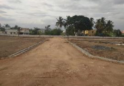 Crescent Enclave  Plots By Manchester Properties