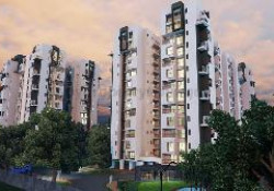 The Wisdom Tree Community By Expat Properties Bangalore