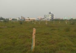 1560596767_banner_Manimanagalam1.jpg