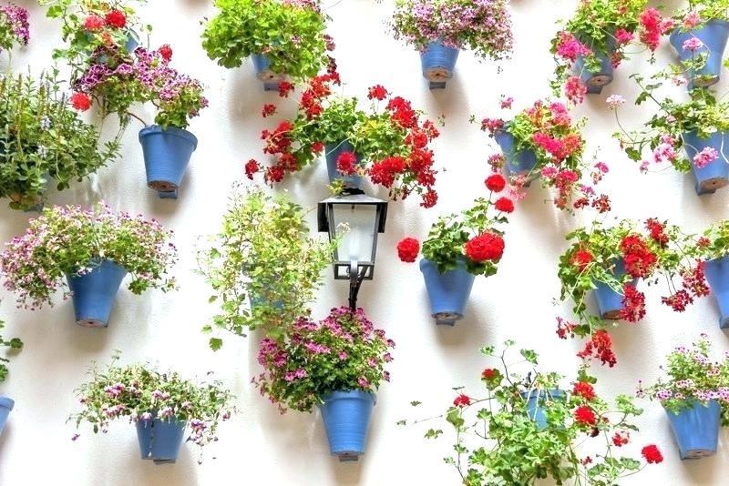 Garden Wall Ideas For A Blissful Outdoor Garden Blog My