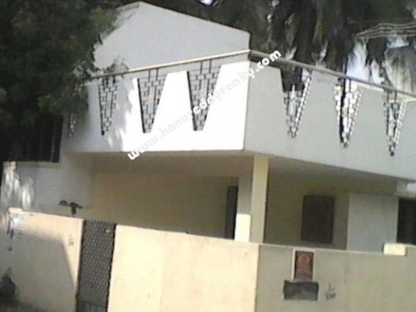 1558612226_banner_Jalladian_Pet_1.jpg
