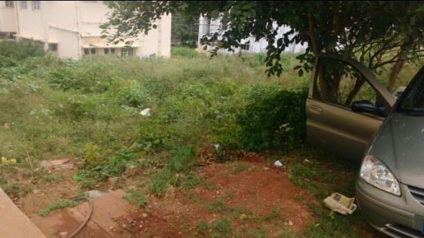 1560337461_banner_bangalore_pap.jpg