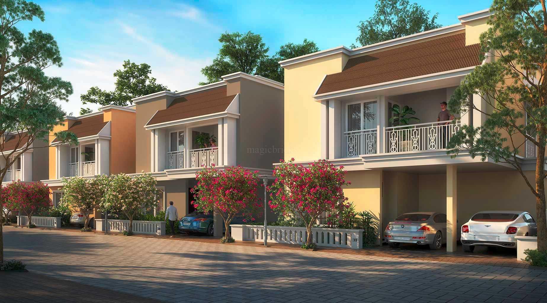 1560588073_banner_Vengaivasal1.jpg
