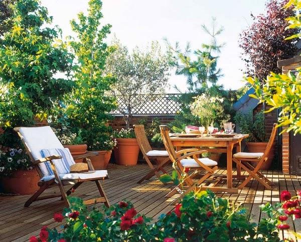Interesting Ideas For Setting Up Your Terrace Garden Blog